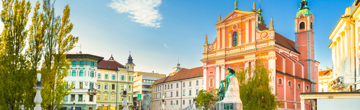 8th EfCCNa Congress 2019 13-16 February | Ljubljana | Slovenia
